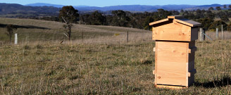 Natural Beekeeping Australia Malfroy's Warre Beehives