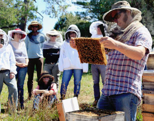 Natural Beekeeping Australia Students