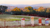 Go to Natural Beekeeping Australia Reading List